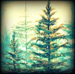 Trees paint
